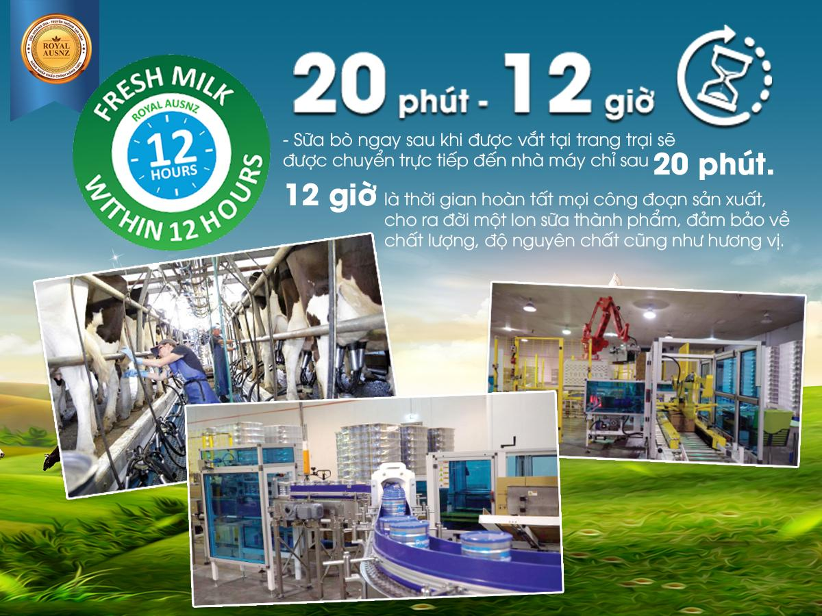 Quy trình sản xuất sữa hoàng gia úc